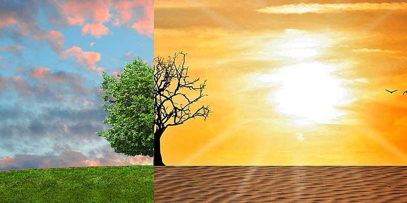 agir-face-au-rechauffement-climatique-800