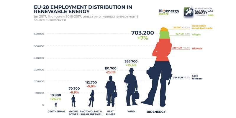 La répartition des emplois dans le secteur des énergies renouvelables